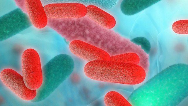 Can Gut Bacteria Unlock Rheumatoid Arthritis?