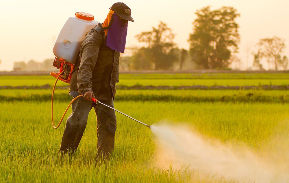 The Link Between Thyroid Disease & Pesticides   Wellness Clinic