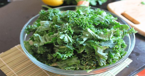 Kale Chips: A Healthier Form of Chips