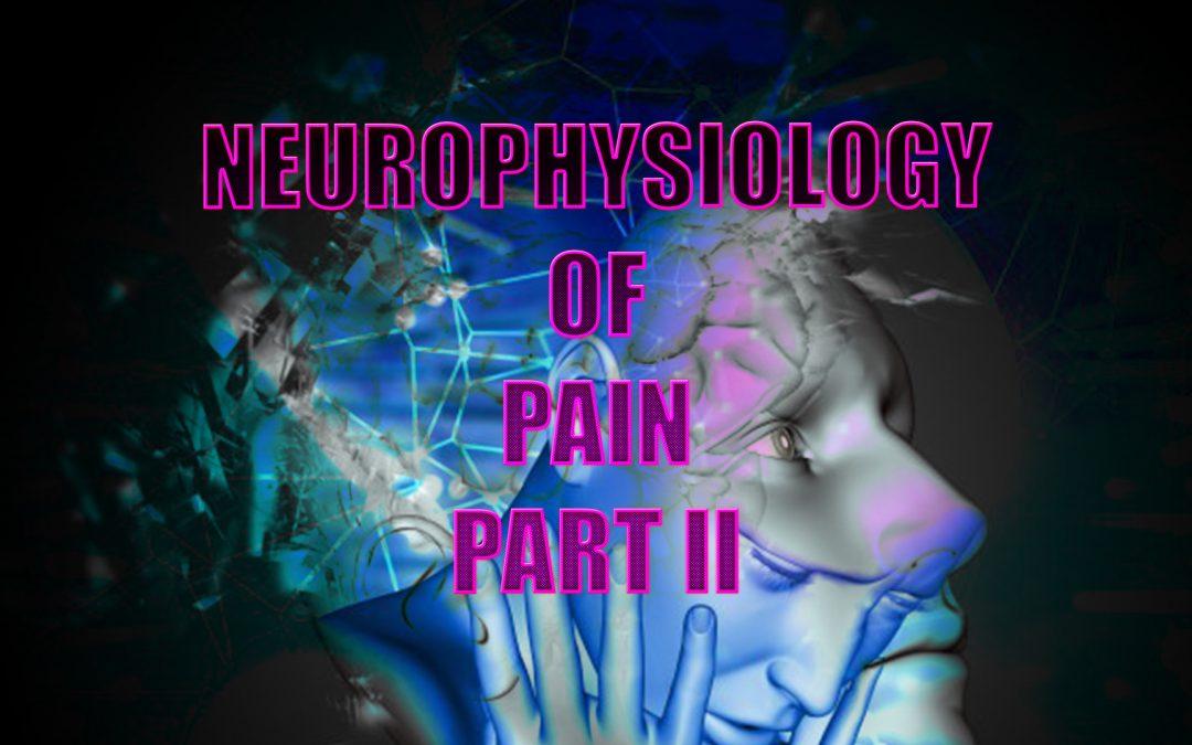 Neurophysiology Of Pain | El Paso, TX. | Part II