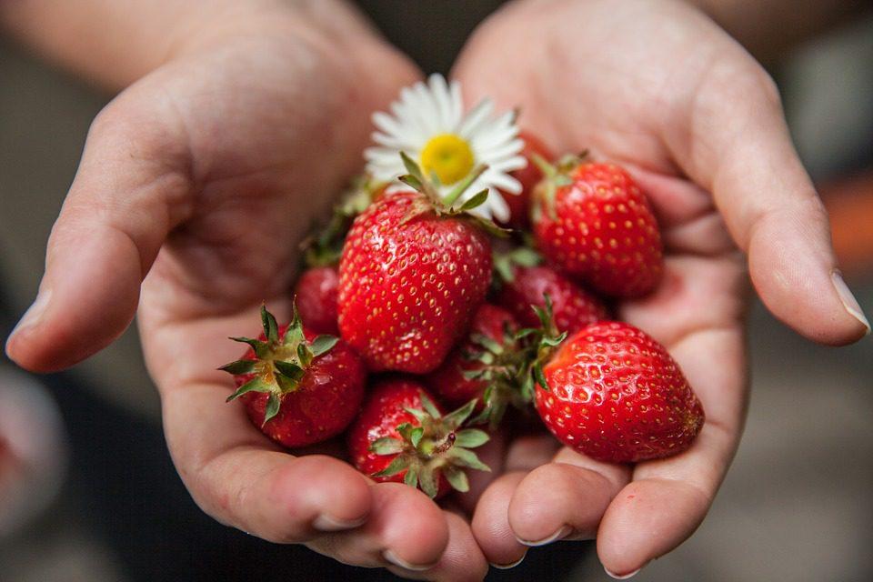 strawberry-1176410_960_720