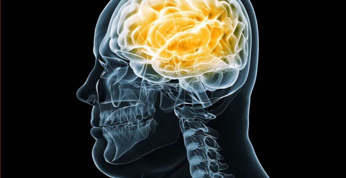 Functional Neurology: Brain Health and Obesity | El Paso, TX Chiropractor